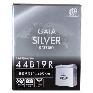 GAIA SILVER BATTERY 44B19R