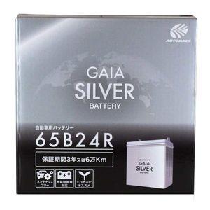 GAIA SILVER BATTERY 65B24R